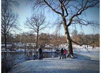 Co robić zimą we Wrocławiu? Park Południowy z pomnikiem Chopina