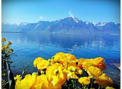 Montreux Szwajcaria | Jezioro Genewskie | Alpy | Zamek w Chillon