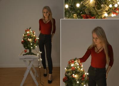 Merry Christmas!  - Adrianna