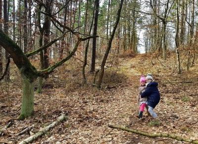 Wszędzie śmieci - Wątpliwe uroki wiosennych spacerów. Opłakany stan zaśmieconych lasów.