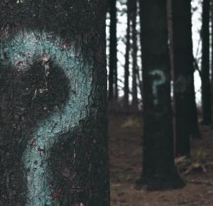 Oczami humanistki: PORADNIK JAK SPIEPRZYĆ SOBIE ŻYCIE W PIĘCIU KROKACH