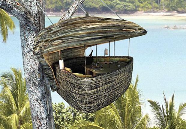 Restauracja na drzewie