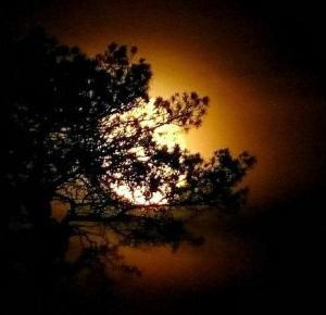 Noc jest piękna, gdy jest księżyc | Muzyczna Lista