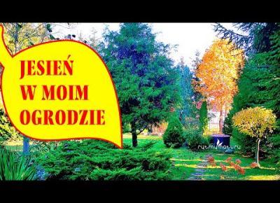 Jesień w ogrodzie jest piękna 🍂 Pospaceruj ze mną