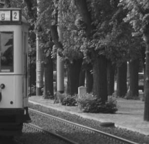 Veni, vidi, vici - lifestyle z duszą: Czarno-białe zdjęcia, kolorowe historie