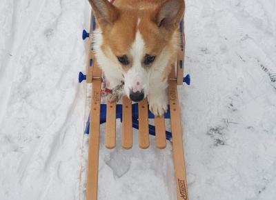 Zima!