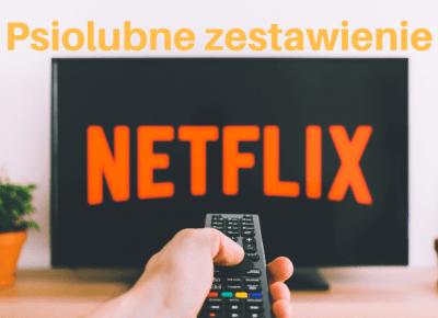 Netflix dla psiomaniaków — Sheldon - Blog bez ogonka