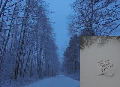 Siejonka: Marta Podgórnik - Zimna książka