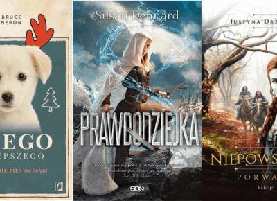 100 książek które chcę przeczytać!!! / SFT