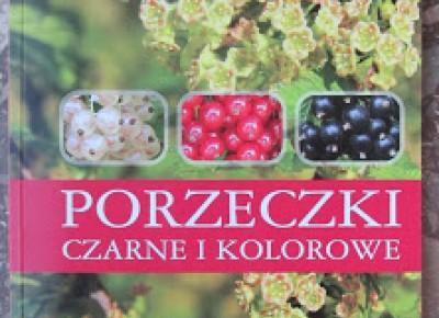 Takie książki - Taka Troche o książkach czyli.. : Stanisław Pluta - Porzeczki czarne i kolorowe