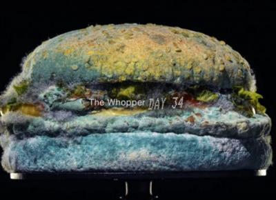 Burger King pokazał w reklamie spleśniałego Whoopera. Akcja okazała się strzałem w dziesiątkę!