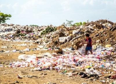 Jak plastik szkodzi Ziemi?