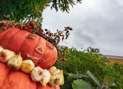 Lista rzeczy do zrobienia tej jesieni!