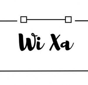 Wi Xa : Zgarnij torbę   niespodziankę