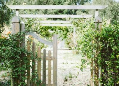 Pomysł na ogródek działkowy – 5 rzeczy, o których nie możesz zapomnieć - Wnętrza dla Ciebie
