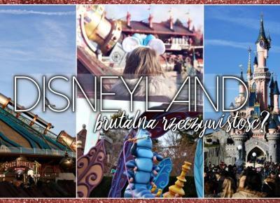 LEVOGUES: Disneyland-brutalna rzeczywistość?