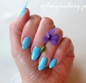 Ładne paznokcie masz zazdrośnikom na nerwach grasz - Rytmy Natury