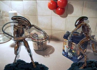 Obcy 8 pasażer Nostromo w mojej kuchni!Dzielnie walczyłam i przeżyłam.