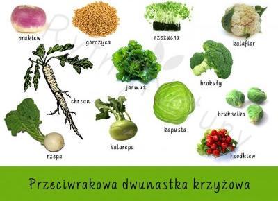 Najzdrowsze warzywa czyli przeciwrakowa dwunastka krzyżowa - Rytmy Natury