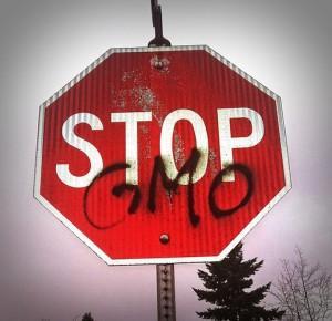 O GMO koniecznie musisz wiedzieć to! - Rytmy Natury