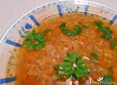 Zupa z soczewicy - przepis na prosty i smaczny białkowy posiłek - Rytmy Natury