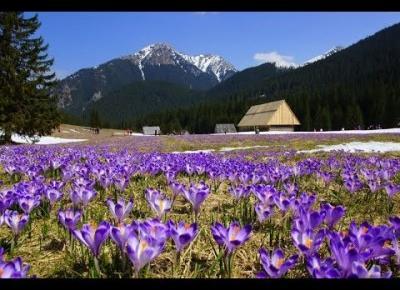 5 najpiękniejszych miejsc w Tatrach