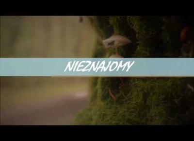 Dawid Podsiadło-Nieznajomy cover by Agnese