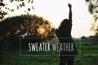 Agnieszka Czech: SWEATER WEATHER