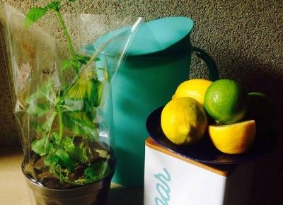 aguuuszka: Orzeźwiająca lemoniada
