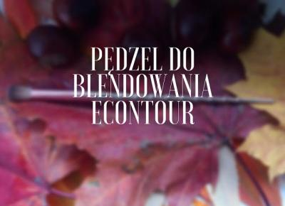 PĘDZEL DO BLENDOWANIA ECONTOUR - Alice in wonderland