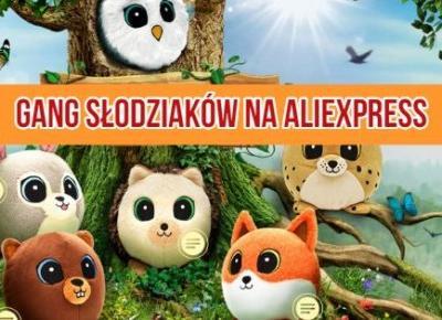 Gang Słodziaków z Biedronki dostępny na AliExpress za kilka złotych - Aliholik.pl