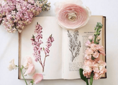 Wiosno, ratuj! – AMSOFF