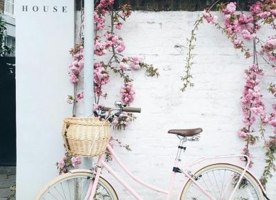 Zainspiruj się na wiosnę! – AMSOFF