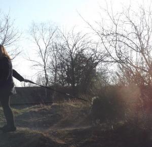 (✿◠‿◠): first sunshine