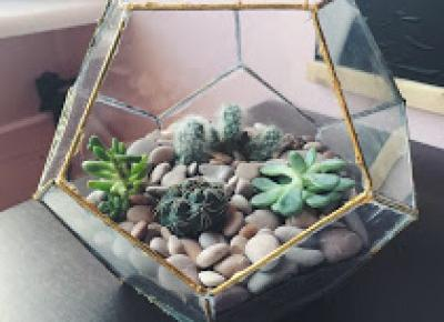Positive Life: Kaktusowy domek DIY