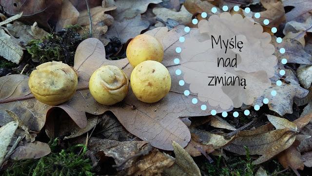 anitka-atinka.blogspot.com: Coraz częście myślę nad zmianą. Chyba coś zmienię