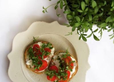 Łatwa i tania w uprawie, a przede wszystkim zdrowa! Zaproś rzeżuchę na talerz. | Architect of free time