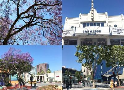 Kalifornia 2016 | Podsumowanie