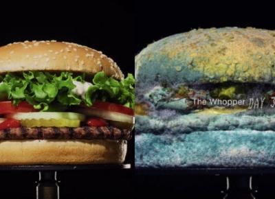 Burger King każe nam oglądać spleśniałego Whoppera. Po co?