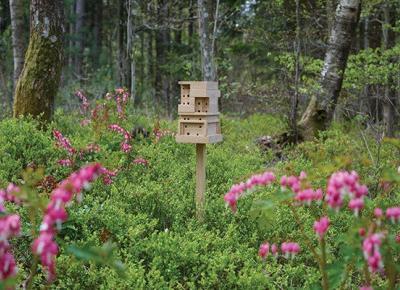 IKEA zachęca do budowania mini domków dla pszczół. Za darmo