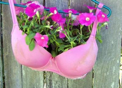 12 Pomysłów Na Oryginalne Doniczki Na Kwiaty