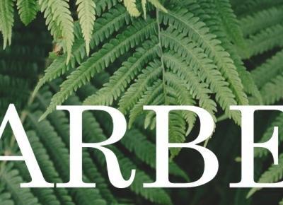 Pharmaceris H - szampon do skóry łojotokowej   BARBEO