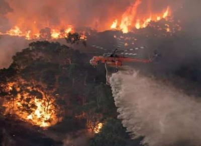 Australia w ogniu. Świat jaki znałem się kończy - Bartłomiej Malec – Oficjalny Blog