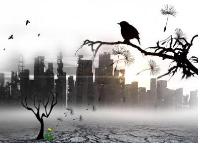 Apokalipsa - Bartłomiej Malec – Oficjalny Blog
