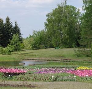 Ogród botaniczny ~ My life is my only love.