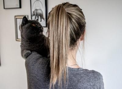 Keratynowe prostowanie włosów - pierwsze wrażenie po 3 tygodniach od zabiegu - BeautypediaPatt | blog urodowy