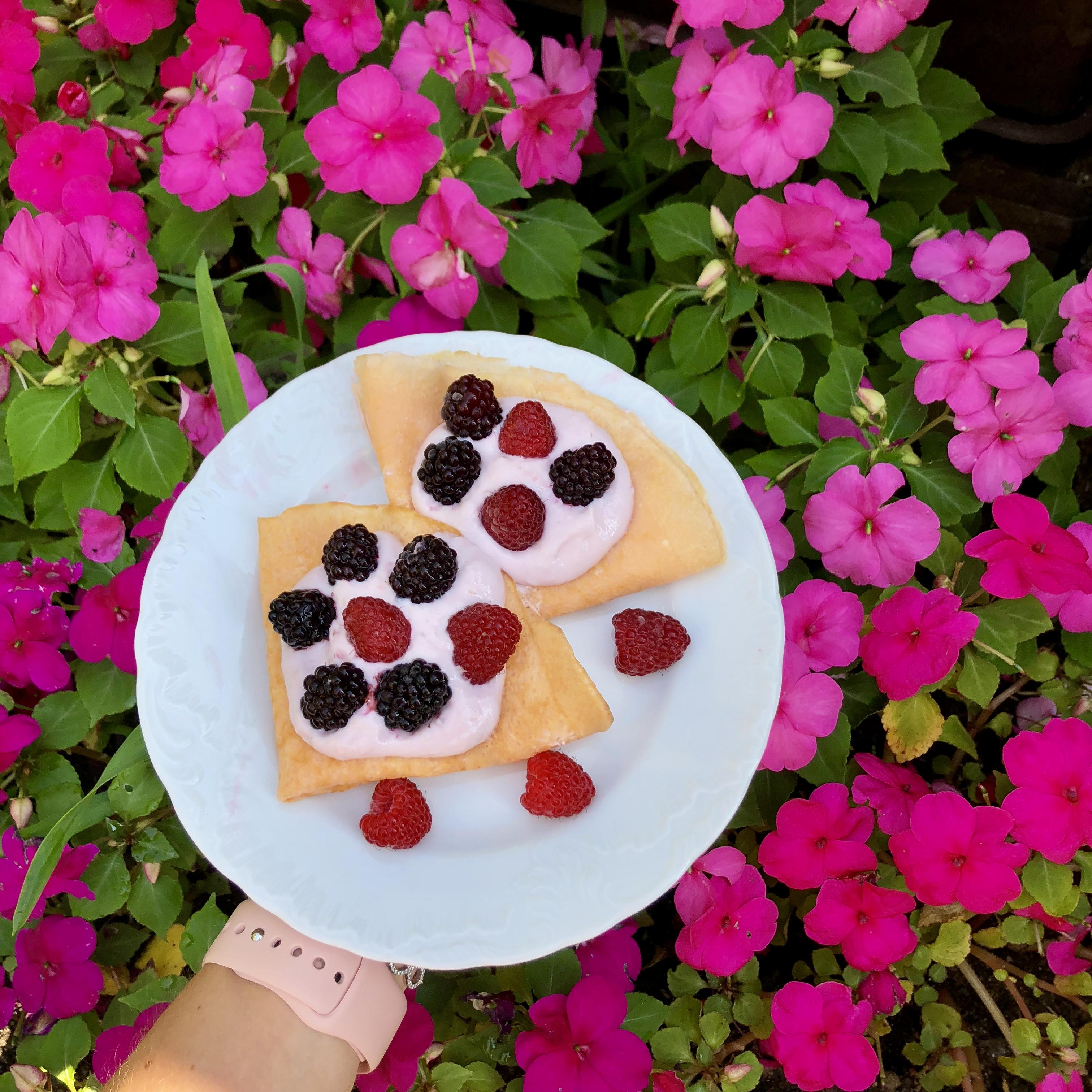 Ania Baczewska on Instagram: ?#yummy ? #nale?nikibudyniowe #nale?niki #nalesnikibudyniowe #pancakes #fitpancakes #aftertraining #posi?ekpotreningowy #posilekpotreningowy??