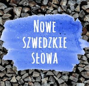Nowe szwedzkie słowa 2015 | Blogodynka.pl