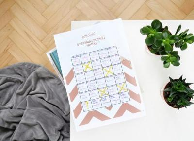 Jak zorganizować angażujące wyzwanie? Podsumowanie Miesiąca Systematycznej Nauki. - Blue Kangaroo