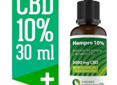 Blog - W jaki sposób powinno się korzystać z oleju CBD aby przynosił on pożądane rezultaty dla zdrowia? Cbdcentral.pl